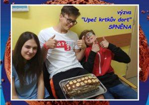 """Sladké odpoledne na Domově mládeže, aneb Výzva """"Krtkův dort"""" splněna"""